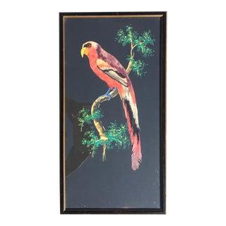 1960s Vintage Bird Botanic Painting For Sale