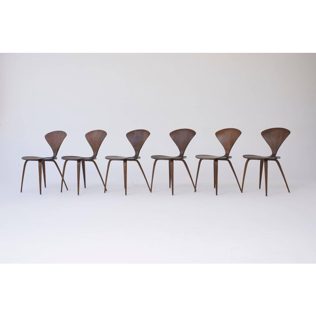Mid 20th Century Set of Eight Norman Cherner Dining Chairs, Made by Plycraft in the Usa, 1960s For Sale - Image 5 of 9