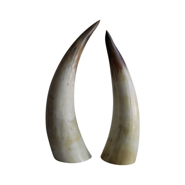 Decorative Bull Horns - A Pair - Image 1 of 4