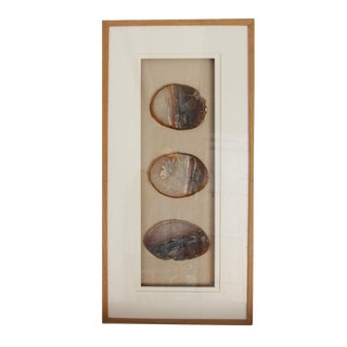 Raw Wood Framed Natural Agate Slices For Sale