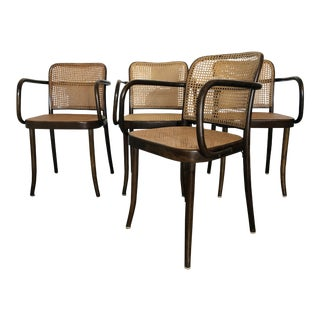 Set of 4 Original Josef Hoffman Prague Chairs for Stendig For Sale