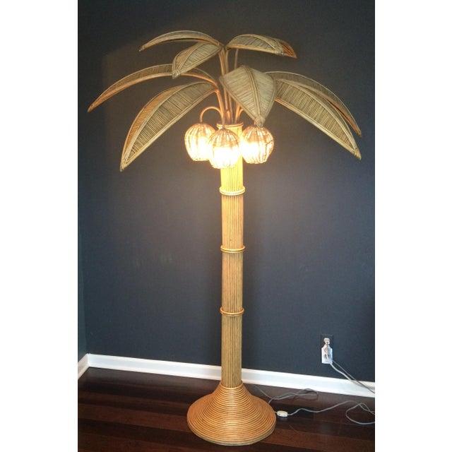 Mario Lopez Torres Rattan Palm Tree Floor Lamp | Chairish