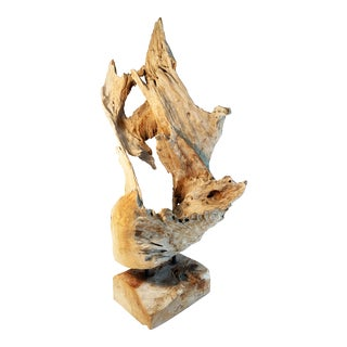 Natural Coastal Atlantic Driftwood Sculpture by Mother Nature For Sale