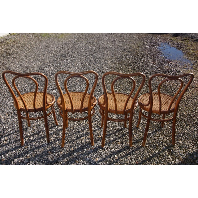 1940s Antique Thonet-Style Bentwood Heavy Cane Woven Seat Parlor Bistro Chairs - Set of 4 For Sale - Image 4 of 13