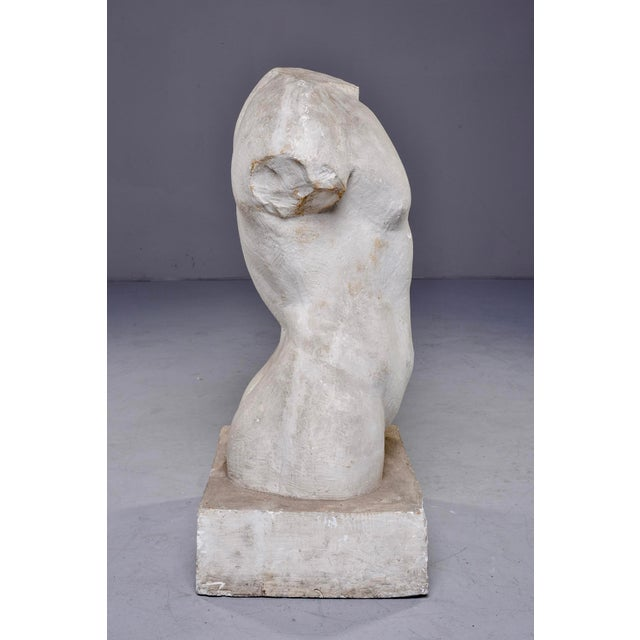 1990s French Plaster Sculpture of Nude Male Torso For Sale - Image 5 of 7