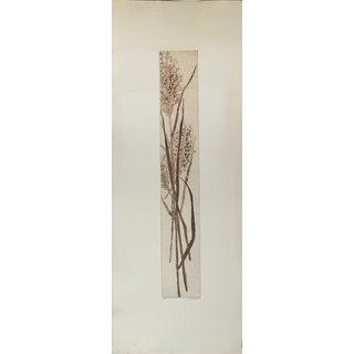 """""""Marsh Grass"""" by Jacklyn Friedman"""