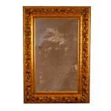Image of Italian Gilt Wood & Carved Mirror For Sale