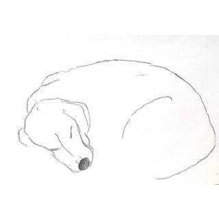 """""""Sleeping Beagle"""" Contemporary Abstract Figurative Drawing by Martha Holden For Sale"""