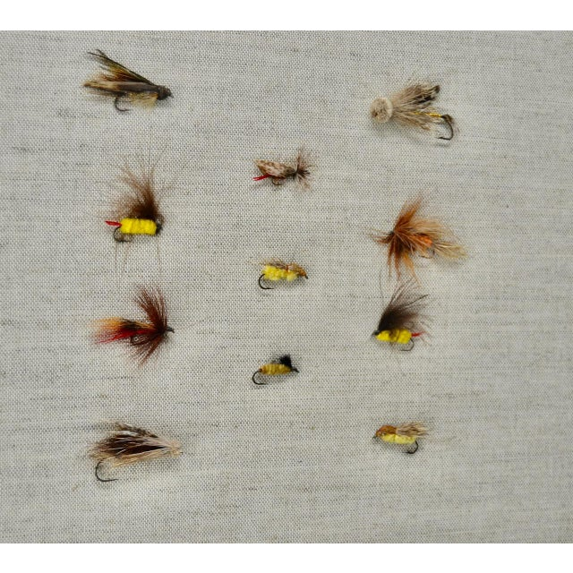 Collection of antique fishing fly lures. Professionally framed.