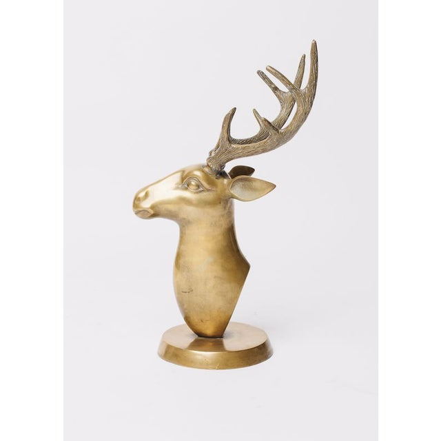 Brass Stags Head Sculpture For Sale - Image 4 of 5