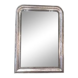 Silver Leaf Louis Philippe Mirror With Decorative Accents For Sale