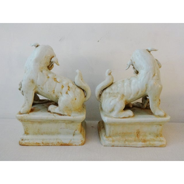 Celadon Foo Dogs - A Pair For Sale In New York - Image 6 of 6
