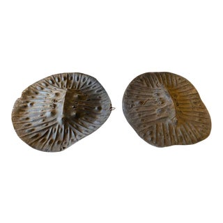 Vintage Early 20th Century African Warrior Shields - a Pair For Sale