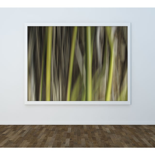 """Ofer Mizrachi """"34"""" Framed Photo Print - Image 3 of 3"""