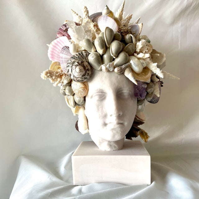 Large Shell-Encrusted Hygiea Head For Sale In West Palm - Image 6 of 6