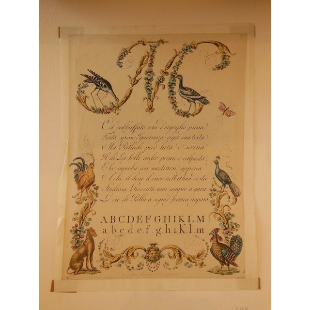 """1790s Illustrated Letter """"M"""" Calligraphy - Image 7 of 7"""