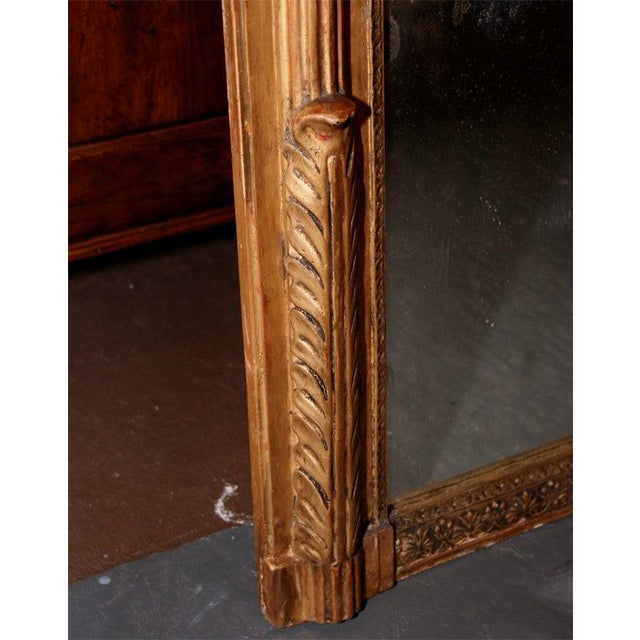 Mid 20th Century Giltwood Louis XVI Style Mirror For Sale - Image 5 of 10