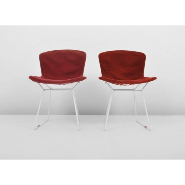Contemporary Harry Bertoia for Knoll International Early Production Wire Chairs - Set of 6 For Sale - Image 3 of 8