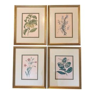 Antique Botanical Prints - Set of 4 For Sale