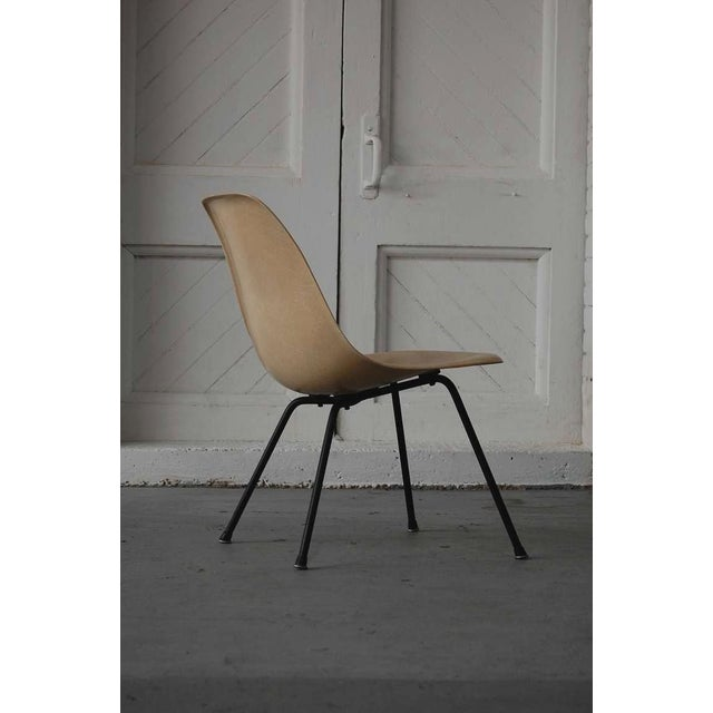"""Early Eames MSX (medium / side / x-base) fiberglass chair, circa 1955. Color is """"Parchment"""" We offer free delivery within..."""