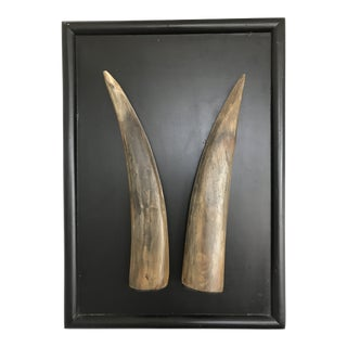 Vintage 1966 Mid-Century Spanish Bull Horns Wall Mount Plaque Sculpture, Spain For Sale