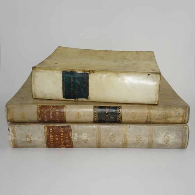 18th Century Traditional Goat SkinVellum Books - Set of 3 For Sale - Image 11 of 11