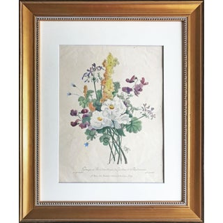 Antique French Floral Botanical Hand Colored Etching For Sale