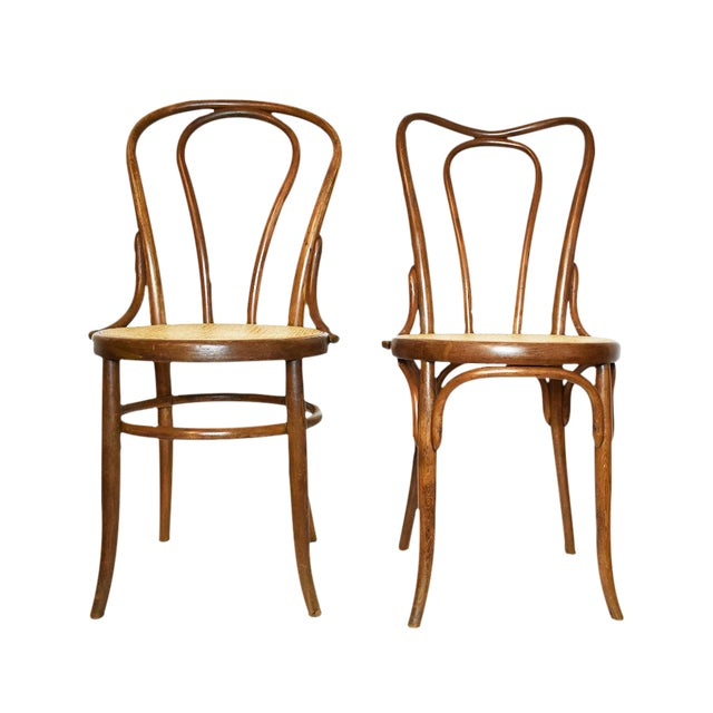 Antique Bentwood Chairs In The Style of Michael Thonet or Fischer- A Pair - Antique Bentwood Chairs In The Style Of Michael Thonet Or Fischer- A