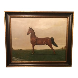 Thorough Bred Horse Original Oil Painting For Sale