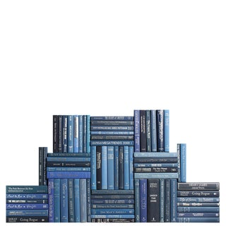 Modern Summit Book Wall : Set of Seventy Five Decorative Books in Blue and Silver