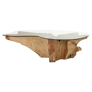 Glass Top Teak Root Coffee Table For Sale