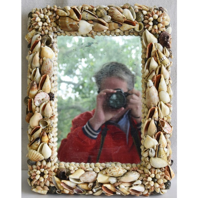 Glass 1960s Beach Nautical Seashell Encrusted Mirror For Sale - Image 7 of 7