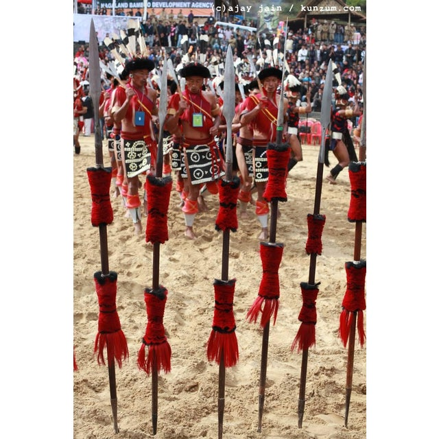 Mounted Ceremonial Nagaland Spear or Staff For Sale In New York - Image 6 of 7