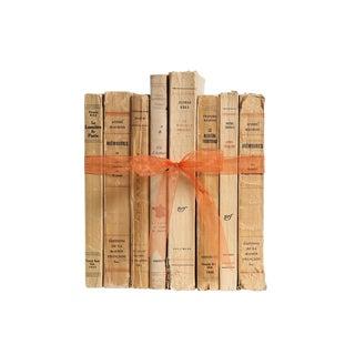 Vintage Decorative Book Gift Set: French Paperbacks For Sale
