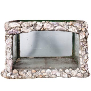 Late 19th Century Sea Shell Aquarium From England For Sale