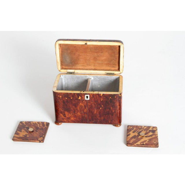 Early 19th Century English Regency Tortoiseshell Tea Caddy For Sale - Image 9 of 13