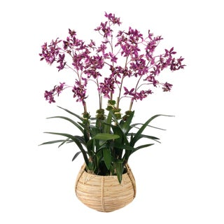 Diane James for Chairish Faux Dancing Orchid in Basket