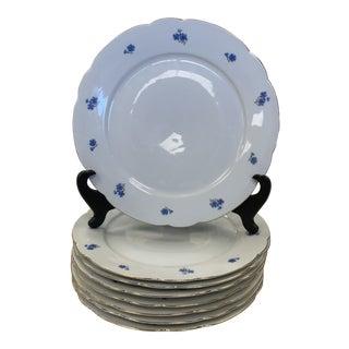 Late 20th Century German Kahla Porcelain Dinner Plates- Set of 8 For Sale