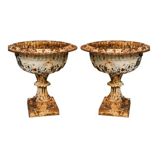 19th Century Iron Garden Urns - a Pair For Sale