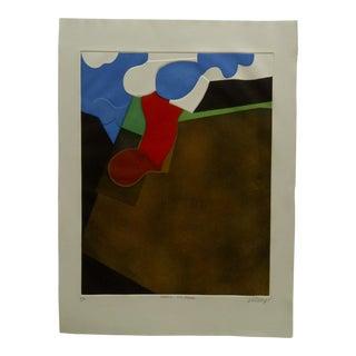 "20th Century Art Print ""Anatomic Drum Paysage"" by Donny"