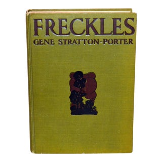"1904 Antique ""Freckles"" by Gene Stratton-Porter Book For Sale"