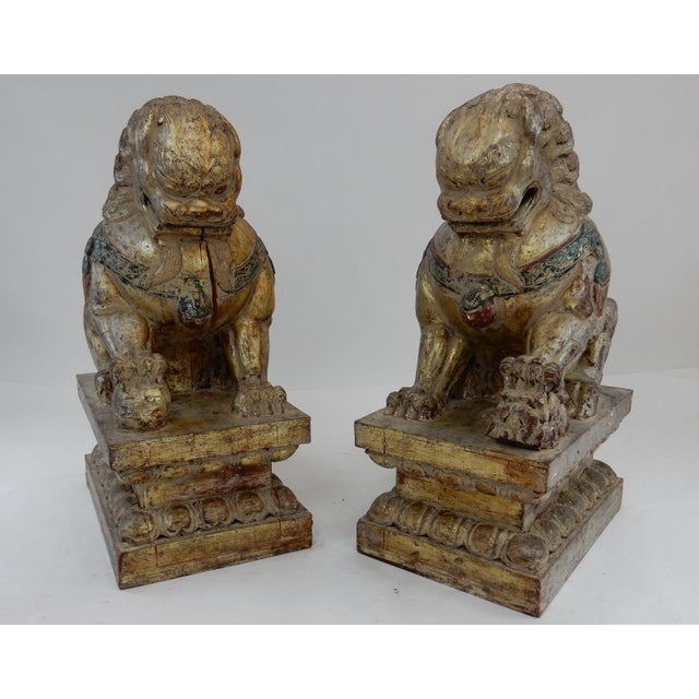 Antique Qing Dynasty Temple Foo Dogs - A Pair For Sale - Image 5 of 11