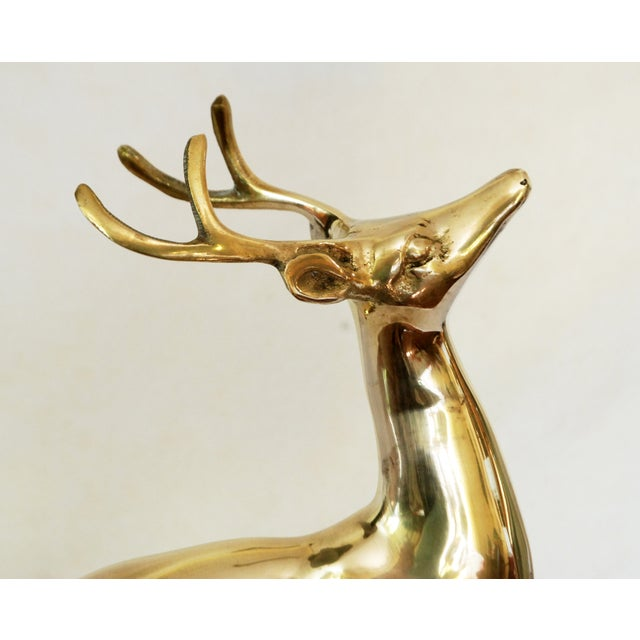 Vintage Solid Brass Buck - Image 6 of 6