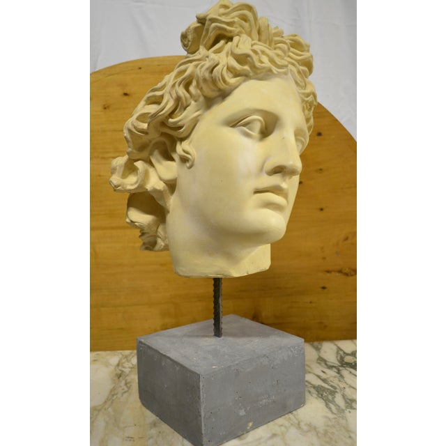 1990s NeoClassical Plaster Bust Sculpture - Greek God's Head on Stone Base For Sale - Image 5 of 10