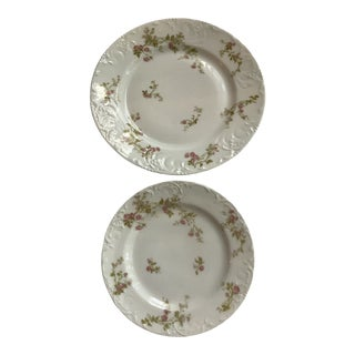 Mid-Century Limoges Plates - a Pair For Sale