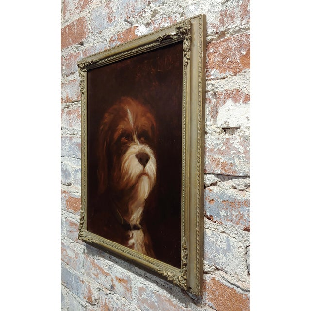 Brown 19th Century Portrait of a Fluffy Dog - Oil Painting For Sale - Image 8 of 11