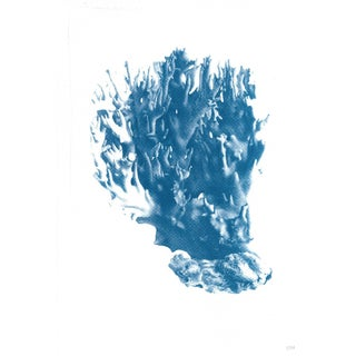 Soft Coral Handmade Cyanotype Print on Watercolor Paper. Limited Edition For Sale