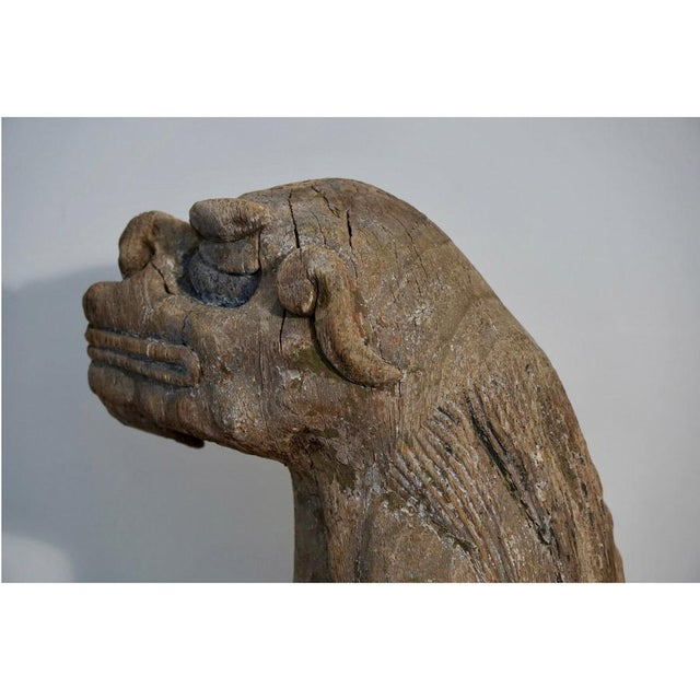 Gray Late 18th Century Foo Dog For Sale - Image 8 of 11