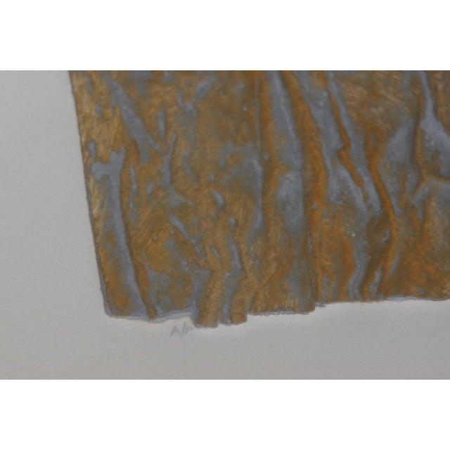 "Gold Janet Jones ""Badlands"" Etching W/ Aquatint C.1983 For Sale - Image 8 of 11"
