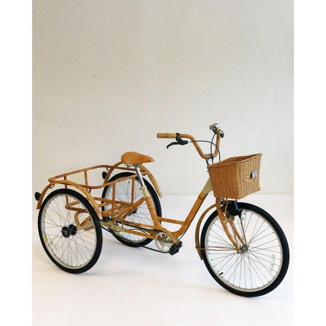 Modern Wicker and Bamboo Tricycle For Sale - Image 3 of 12